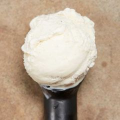 Northern Bloc Madagascan Bourbon Vanilla Ice Cream