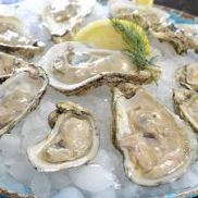 Oysters Pacific Rock