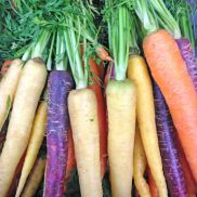 Fresh Heritage Carrot Bunch