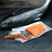Fresh Scottish Salmon Portions