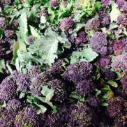 Fresh Purple Sprouting Broccoli