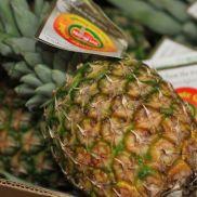 Fresh Pineappe Victoria