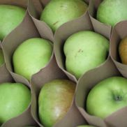 Fresh Cooking Apples