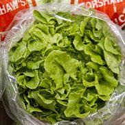 Fresh Lettuce Crisp