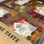 Fresh Tomato Stall Speciality Tomatoes
