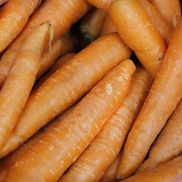 Fresh Washed Carrots